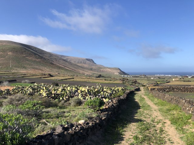 Lanzarote - more beautiful than ever